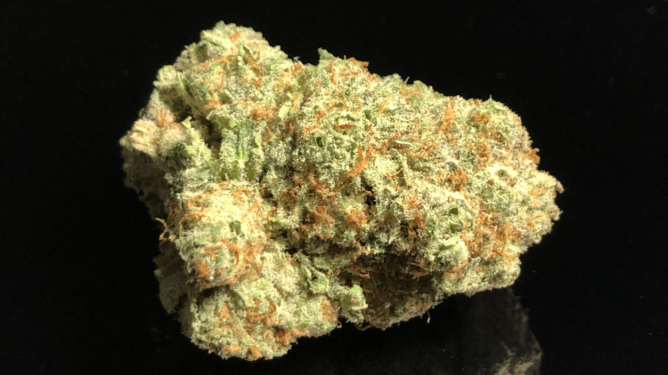 TROPICANA - Special Price $150 oz!